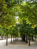 Jardin des Tuileries arkivfoton