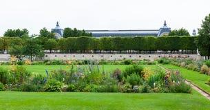 Jardin des Tuileries, centraal Parijs, Frankrijk Stock Foto's