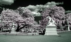 Jardin des Tuileries, Paris, Stock Photography