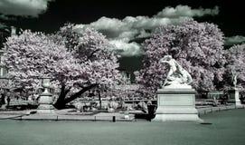Jardin des Tuileries, Paris, Stock Photography