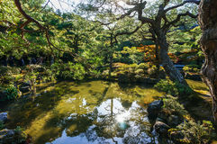 Jardin du Japon Images stock