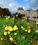 Jardin du Lussemburgo & palazzo Fotografia Stock Libera da Diritti