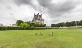 Jardin du Luxembourg avec le palais Peu de canards sont dedans Image stock