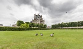 Jardin du Luxemburgo con el palacio Pocos patos están adentro Imagen de archivo