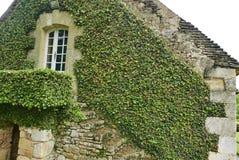 Jardin du Manoir d'Eyrignac 免版税图库摄影