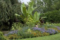 Jardin en été image libre de droits