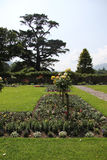 Jardin en fleur Photo stock