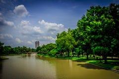 Jardin en Thaïlande Chatuchak 34 Image libre de droits