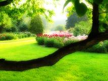 Jardin enchanté Image stock