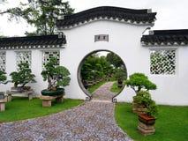 Jardin et bonzaies chinois Images libres de droits