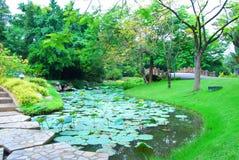 Jardin et eau Lilly Image stock