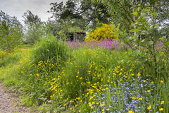 Jardin et hutte de Wildflower de granges de Kilnford Photos libres de droits