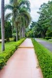 Jardin et route en parc Photographie stock libre de droits