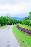 Jardin et route en parc Photos stock