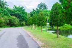 Jardin et route en parc Images stock