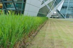 Jardin et une construction moderne Photo libre de droits