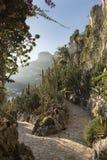 Jardin Exotique, Монако стоковое изображение rf
