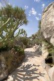 Jardin exotique du Monaco Image libre de droits