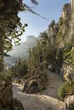 Jardin Exotique, Monaco Lizenzfreies Stockbild
