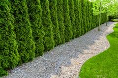 Jardin formel avec un chemin de petites pierres, de bordure de haies et de pelouse verte Images libres de droits