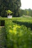 Jardin français Photo stock