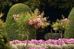 Jardin français Photos stock