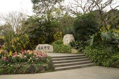 Jardin gentil en montagne Chine de Nanning Qingxiu Photos stock