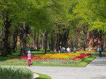 Jardin grand de Moscou Kremlin photos libres de droits