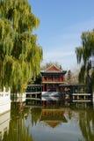 Jardin grand de vue Photographie stock libre de droits
