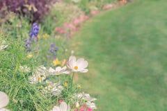 Jardin heureux Photo libre de droits