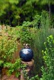 Jardin heureux 4 photos stock
