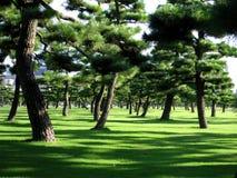 Jardin impérial Tokyo Images libres de droits