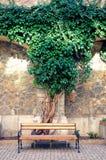 Jardin intérieur de château de Peles, Sinaia, Roumanie Photo stock