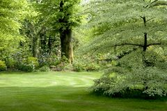 Jardin irlandais traditionnel Photo stock