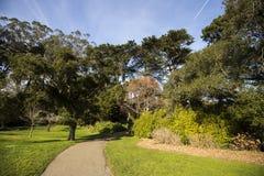 Jardin japonais à Golden Gate Park, San Francisco Photographie stock libre de droits