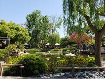 Jardin japonais image stock