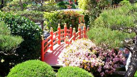 Jardin japonais au Monaco photo stock