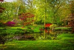 Jardin japonais au printemps Image stock