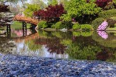 Jardin japonais avec la passerelle Images stock