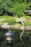 Jardin japonais avec la réflexion de l'eau Photographie stock libre de droits