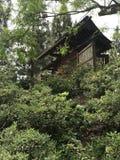 Jardin japonais d'amitié photo libre de droits