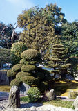 Jardin japonais d'horizontal Image stock