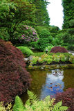 Jardin japonais dans des jardins de butchart Image stock