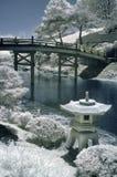 Jardin japonais dans l'infrarouge Image libre de droits