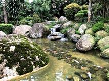 Jardin japonais dans le paysage d'été Photographie stock libre de droits