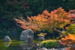 Jardin japonais de parc comm?moratif de l'expo ?70 photographie stock libre de droits