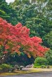 Jardin japonais de parc comm?moratif de l'expo ?70 photos stock