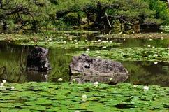 Jardin japonais fleurissant de tombeau de Heian, Kyoto Japon Photographie stock