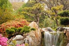 Jardin japonais, sa petite cascade et ses fleurs photo libre de droits