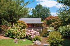 Jardin japonais traditionnel en été photo stock